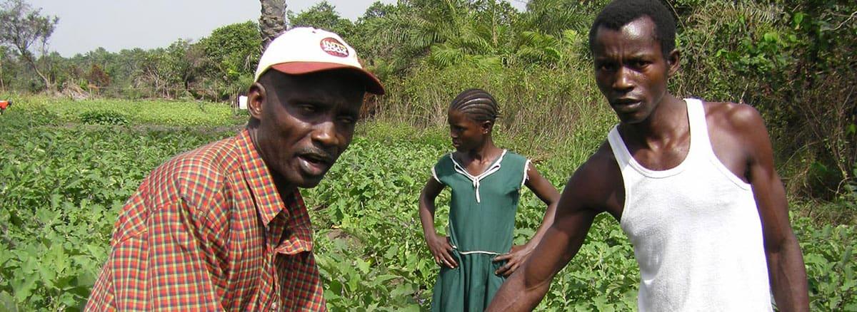 Landwirtschaftliche Arbeit bei Forikolo