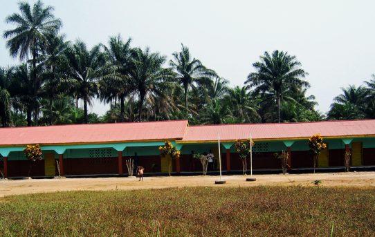 In Forikolo haben wir 2006 unsere erste Schule fertiggestellt - eine Grundschule. Forikolo ist ein Dorf in der Region Loko Massamma in Sierra Leone.